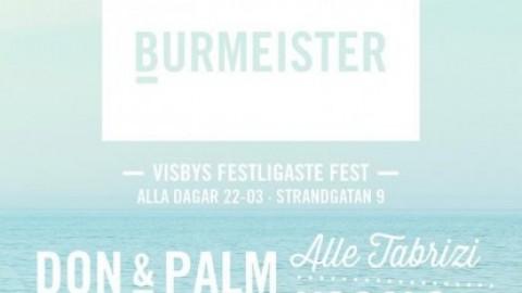 Burmeister W.29 2014